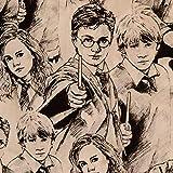 Unbekannt Camelot Harry Potter Skizze Basteln Baumwolle Stoff - Harry, Ron & Hermine - Bambi & Klopfer Diamanten - Marina, 1 metre
