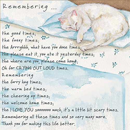 loss-of-a-pet-cat-condolence-sympathy-card-remembering-the-good-times