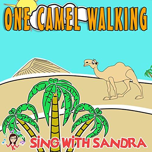 Walking Camel (One Camel Walking)