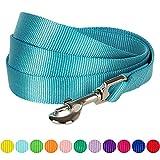Blueberry Pet Hundeleine, strapazierfähig, klassisch, 1,5 m x 1,6 cm, Größe M, Türkis, S, Basic Nylon Leinen für Hunde