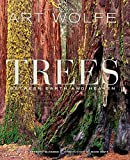 Trees: Between Earth and Heaven (Volume 1)