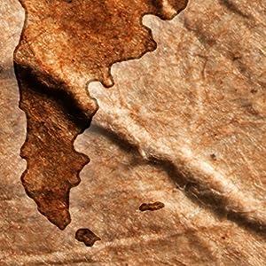 decomonkey | Fototapete Weltkarte Landkarte Kontinent 400x280 cm XXL | Design Tapete | Fototapeten | Vlies Tapeten | Vliestapete | Wandtapete | moderne Wanddeko | Wand Dekoration Schlafzimmer Wohnzimmer | Braun | FOB0213c84XL