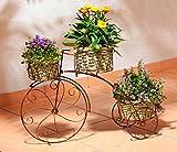 Wenko 5857060500 Pflanzen-Fahrrad Nostalgie mit 3 Metall- Körben, Metall Stahl, 62 x 42 x 21 cm, braun