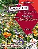 Royalfleur PFRE08354 Graines de Mélange de Fleurs mon Massif Multicolore 8 m²