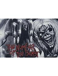 Iron Maiden Fussmatte The Number Of The Beast Fußmatte Schmutzmatte Türabstreifer Türmatte Fußabstreifer Teppich doormat