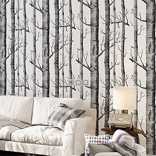 Tapete by COUTUDI, Natur Birke Baum - Wald Holz Vliestapete Wandbilder, PVC frei Fine Decor, 0.53m B*10m L Birke Bücherregal