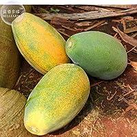 Pinkdose2018 Hot Sale Davitu Yellow Papaya Yellow Skin Semillas de Frutas Orgánicas, 6 Semillas, Sabroso Dulce Gigante Pawpaw Tree