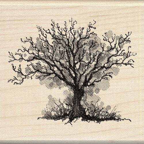 mpel, Herbst Baum (Inkadinkado Stempel Halloween)