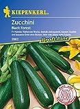 Zucchinisamen - Zucchini Black Forest F1 von Kiepenkerl