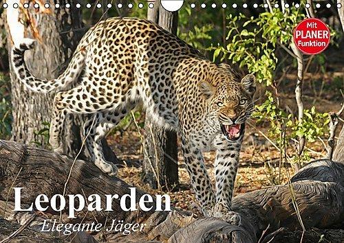 Leoparden. Elegante Jäger (Wandkalender 2017 DIN A4 quer): Die Kraft und Ästhetik geschmeidiger Raubkatzen in (Leopard Elegante)