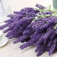 ALCYONEUS - bouquet di 12 rametti di lavanda per decorazione giardino, casa e matrimoni. Dark Purple