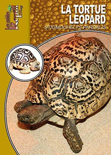 La tortue léopard par Mario Herz