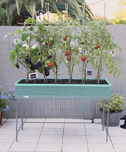 Green Passion Metallhochbeet. Hochwertiges Sortiment, Pflanzbeet, Kräuterbeet, Gemüsebeet für Balkon & Terrasse 120x56x80 cm.Mint-Farbe
