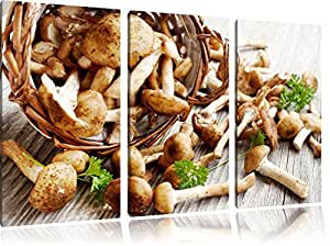 Petite Coupe Champignon sur bien plancher de bois 3-piece Canvas Art 120x80 image on canvas, XXL huge Pictures completely framed with stretcher, Art print on wall picture with frame, gänstiger as a painting or an oil painting, not a poster or banner