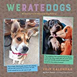 We Rate Dogs 2019 Square Wall Calendar