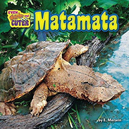 Matamata (Even Weirder and Cuter) por E. Merwin
