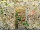 1art1 63837 Mauern - Romantische Garten-Mauer, 2-Teilig Selbstklebende Fototapete Poster-Tapete 240 x 180 cm