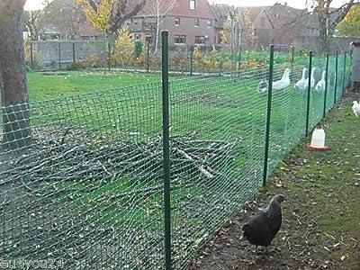 MASCHENGEWEBE in 1,2m Breite Kunststoffzaun Baustellenzaun Geflügelzaun Hühnerzaun Gartenzaun Zaun Rankhilfe Grün (METERWARE) von Goplast auf Du und dein Garten