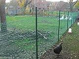 30m² MASCHENGEWEBE 0,6m x 50m Kunststoffzaun Gartenzaun Geflügelzaun Gartenzaun Zaun Rankhilfe Grün