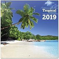 Grupo Erik - Calendario Da Muro 2019 Tropical Paradise 30 X 30 Cm