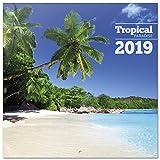 Grupo Erik Editores CP19073 - Calendario 2019 Tropical Paradise, 30 x 30 cm