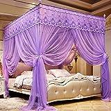 BAIHOME 3 Tür öffnen Verschlüsselungs Moskitonetz für das Bett, Rechteckige Edelstahl Bodenständer Prinzessin Bett Vorhang,Purple,2 * 2.2m
