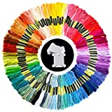 Pllieay 100 Skeins Embroidery Thread Random Colors Cotton Embroidery Floss
