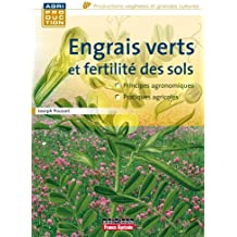Engrais vert et fertilité des sols