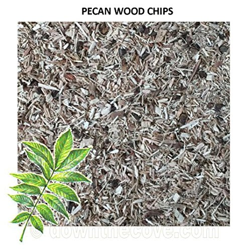 100g Pecan Wood Chips / Wood Dust for Hot Smokers / Smoking Ovens / BBQ