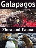 Galapagos: Flora and Fauna [OV]