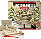 Dinosaur Fossils Digging Excavation Kit Dig Your Own Skeleton Glow In The Dark