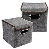LEADSTAR 2 Stück Faltbare Aufbewahrungsbox Aufbewahrungskorb Faltboxen Spielzeugkiste Truhe mit Deckel 25x25x25cm (Grau)