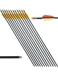 """12 Flechas Flecha de tiro con arco de destino profesional de aluminio 20 60 29 Pounds """""""