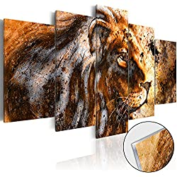 murando - Cuadro de cristal acrílico 200x100 cm - Cuadro de acrílico - Impresion en calidad fotografica - León Animal g-B-0026-k-o