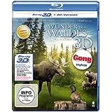 Wunder des Waldes - Tales of a Forest