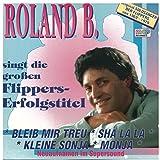 Roland B. singt die großen Flippers-Erfolgstitel