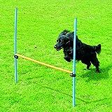 Pawise 11432 Agility Hürde Hunde Trainingshürde Hurdle