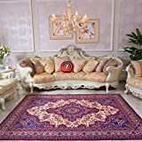 Traditioneller Vintage Persian Floral Oriental Area Rug, Easy Clean Stain Fade resistent Classic Thick Soft Living Dining Room Teppich,#A,200×300cm(6.5'x10')