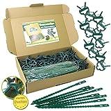 Pflanzenclips 180 Stück stabile Clips Pflanzen Klammern & Binder für kleine & große Triebe Spaliere Rosenbögen Rankhilfen (180er-Set KLEIN+)