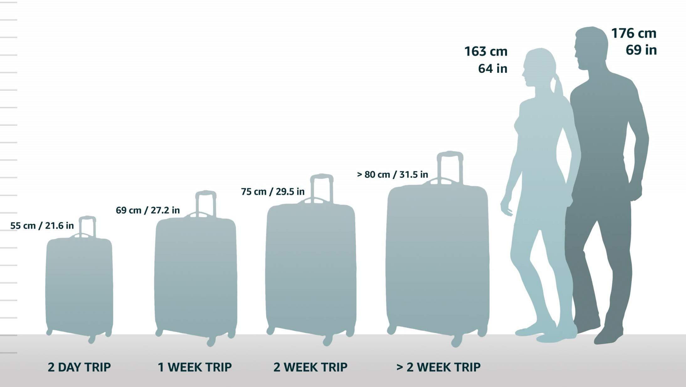 Kipling Teagan M Cartera para Pasaporte, 74 litros
