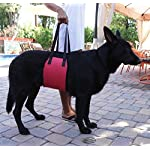Jhua Dog Support Harness Dog Lift Support Rehabilitation Harness (Large) 14