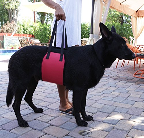 Jhua Dog Support Harness Dog Lift Support Rehabilitation Harness (Large) 7