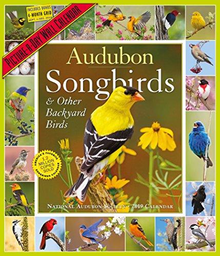 Audubon Songbirds & Backyard Birds Picture-a-Day 2019 Calendar par National Audubon Society