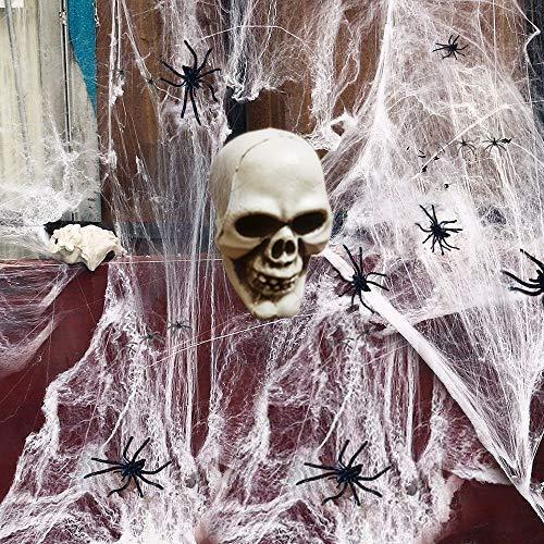kungfu Mall 1PC Calavera de Halloween con 1pc White Spider Wed y...