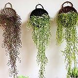 Lembeauty fatto a mano in vimini rattan Flower Wall Hanging pianta di vasi vaso per la decorazione della casa festa di nozze