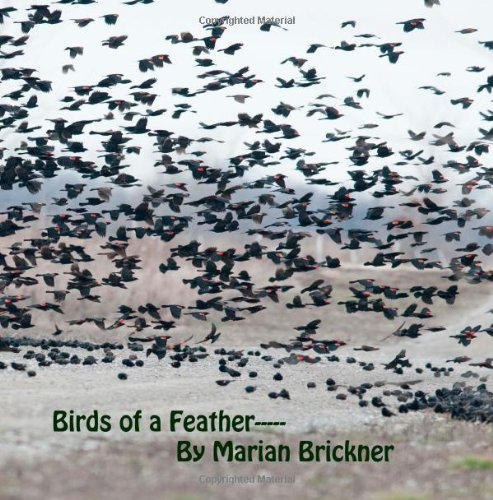 Birds of A Feather---