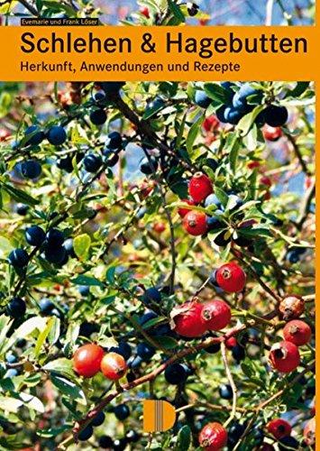 Schlehen & Hagebutten: Herkunft, Anwendungen und Rezepte