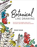 #7: Botanical Line Drawing