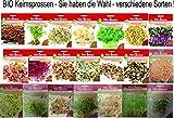 Bio Keimsprossen vers Sorten Alfalfa Radies Brokkoli Weizen Rauke Linsen Zwiebel (Alfalfa)