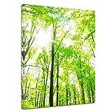 Bilderdepot24 Kunstdruck - Grüner Wald - Bild auf Leinwand - 30x40 cm einteilig - Leinwandbilder - Bilder als Leinwanddruck - Wandbild